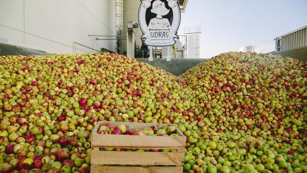 Más de 1.000 cultivadores acercarán la cosecha de manzana a Custom Drinks
